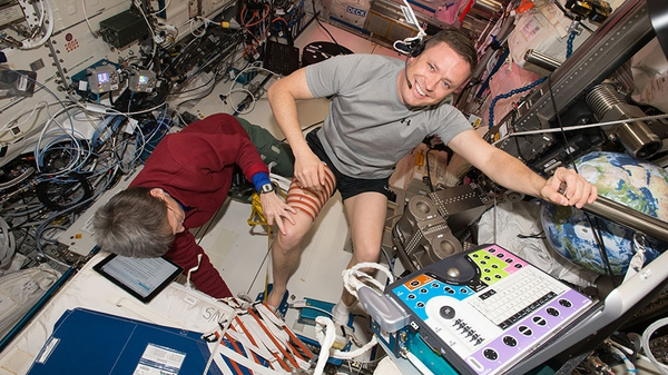 Space Station Commander Peggy Whitson evaluated Flight Engineer Jack Fischer's calf and thigh for a study to assess spaceflight-induced changes in muscle volume. Doctors are evaluating the effectiveness of high intensity, low volume exercise to keep astronauts healthy in space. (NASA)